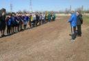 Городские  соревнования по мини-футболу