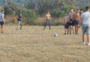 12 сентября состоялись соревнования по футболу